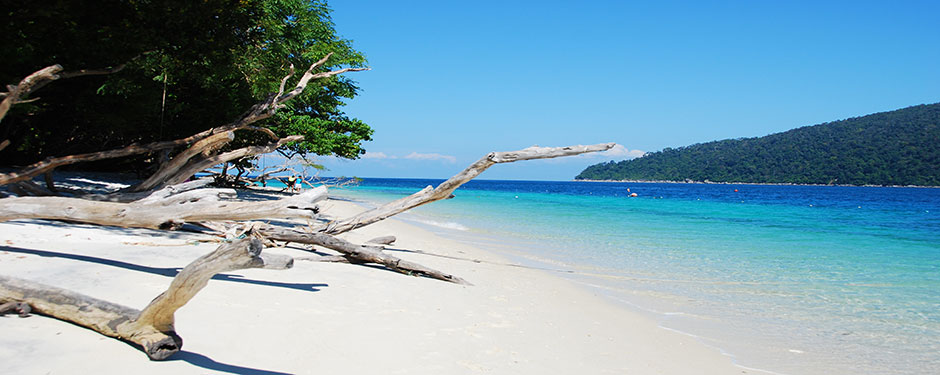 Welcome to new Green View Resort koh Lipe Website